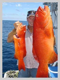biggest trout