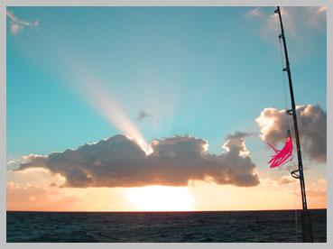 sunset3jpg.jpg
