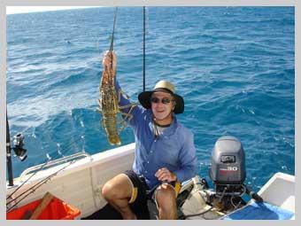 coral-crayfish.jpg