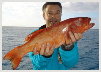trout2tdb07.jpg