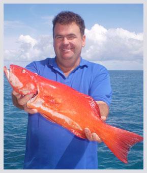 trout2sh08.jpg
